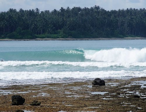 Nias Weekly Surf Report 01-08 Aug 17 by Mark Flint