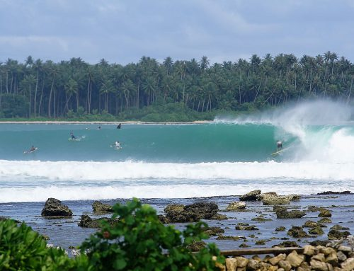 Nias Weekly Surf Report 8-15 Aug by Mark Flint