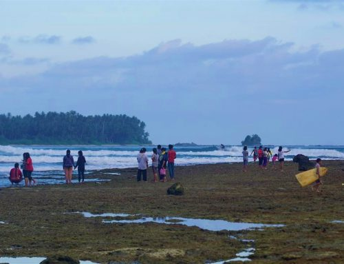 Nias Weekly Surf Report 22-29 Aug by Mark Flint
