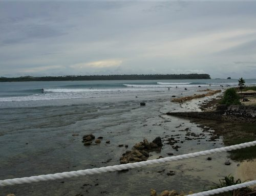 Nias Fortnightly Surf Report 8 to 22 November – by Mark Flint