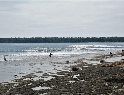 Nias Surf Report -January Highlights -Waves everyday !