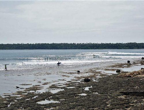 Nias Surf Report -January Highlights -Waves everyday !
