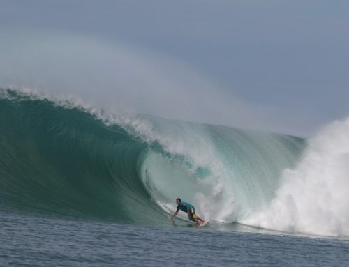 Mega Swell Gallery by Justin Buulolo