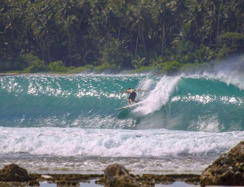 Nias Surf Report – April 2019 – Super fun!